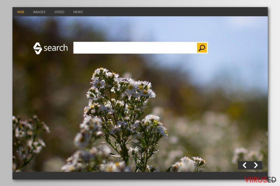 Bing otsinguviirus